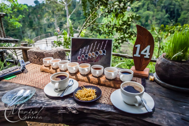 Bali Pulina Coffee And Spice Plantation